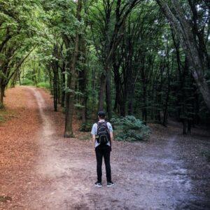 Sind Sie entscheidungsfreudig? Eine Audio- oder Lese- Andacht von H.Worreschk
